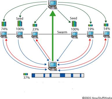 Bir BitTorrent istemcisi aynı anda dosyanın çeşitli bölümlerini gönderip alabilir.